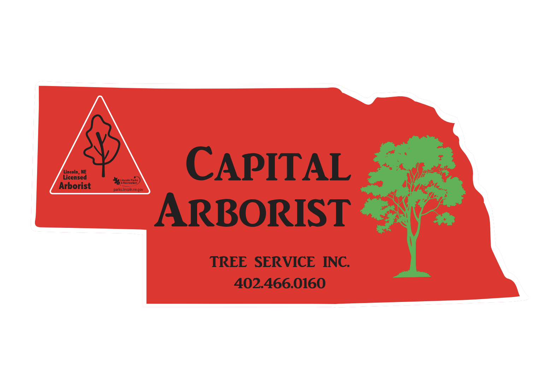 Capital Arborist Tree Service